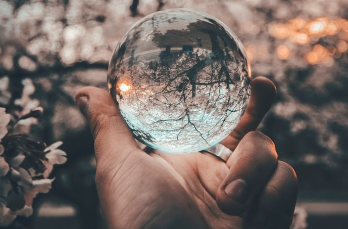 Close-up of hand holding crystal ball in front of tree