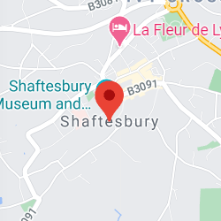 Cropped Google Map with pin over Shaftesbury
