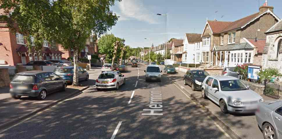 Wanstead Google Streetview Image Hermon Hill