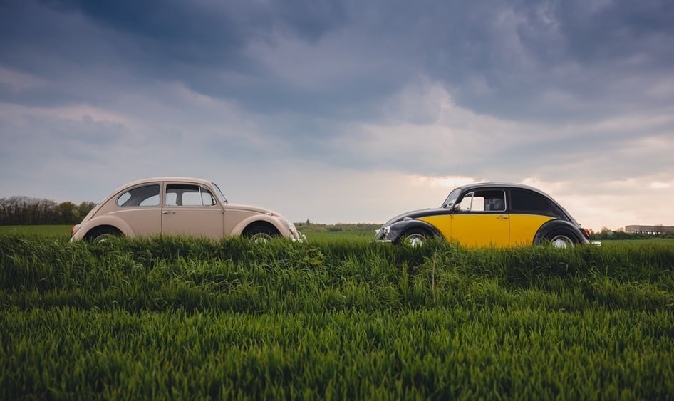 Two Beetle cars facing each other in a field